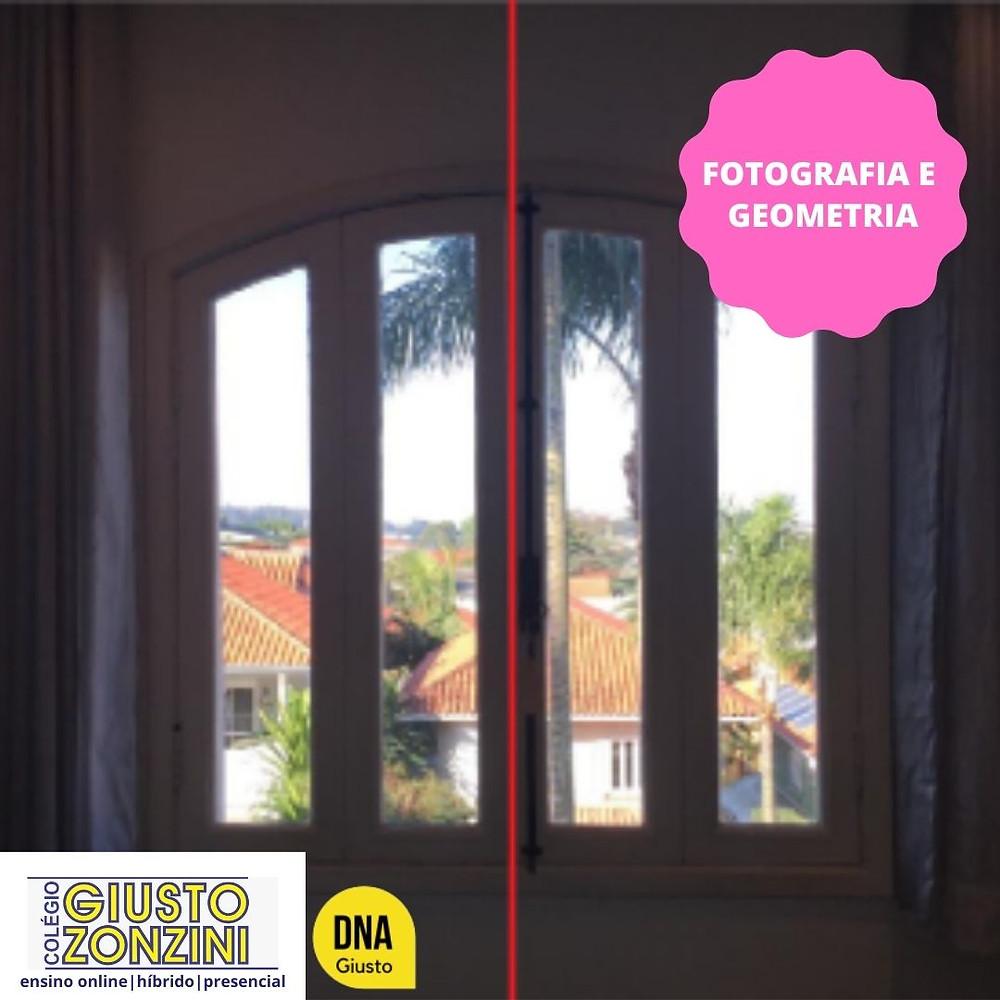 #PraCegoVer - Fotografia - Imagem de uma janela de vidro fechada com duas cortinas, uma de cada lado. Atrás da janela, uma paisagem de casas com árvores e um grande coqueiro. Fim da descrição