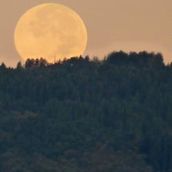 Full moon set. Tuscany
