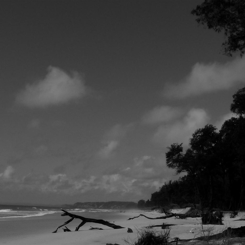 Monsoon paradise 2