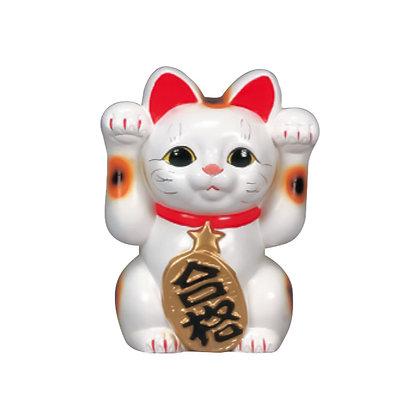 合格猫 白 招き猫