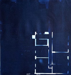 9 elms 4 floors 50x50 cyanotype 2_edited