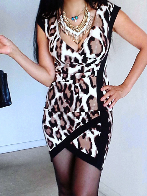 Wrap Leopard Dress