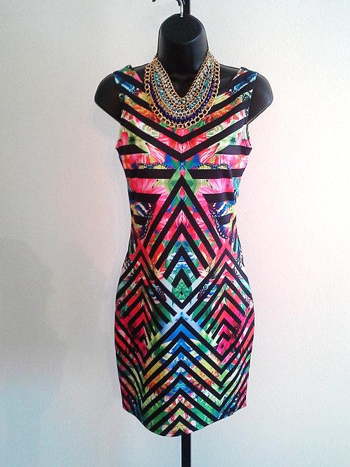 Red Stripe Animal Print Dress