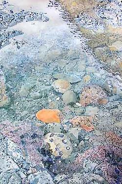 Duxbery Reef III
