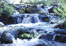 Sierra Creek