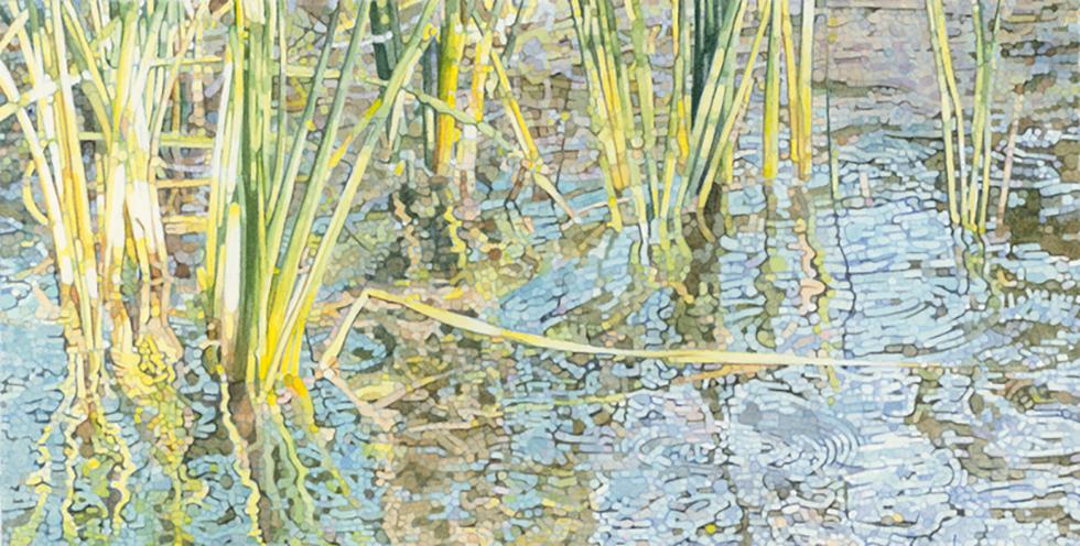 Lagunitas Reeds