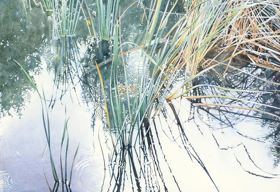 Lagunitas Reeds II