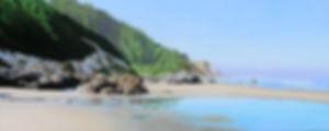 coastal-2.jpg