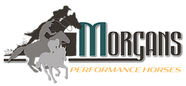 morgans-performance-horses-logo4.png