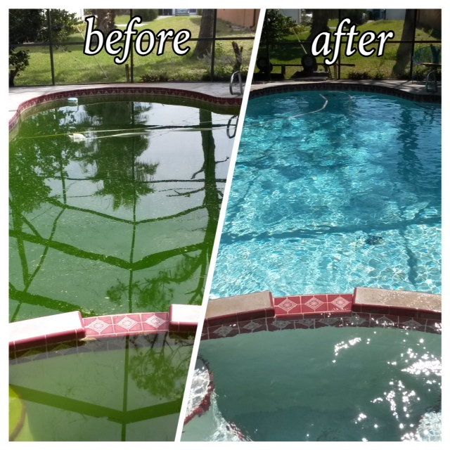 Sparkle Pool Cleaning 5