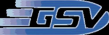 Servizi GSV