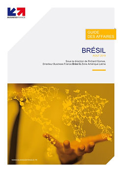 Guide_des_affaires_Brésil_2018.jpg