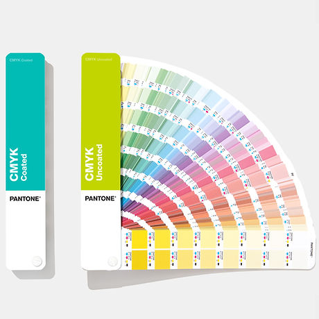 Paleta de cores.jpg