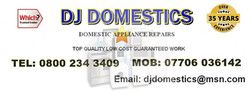 DJ Domestics