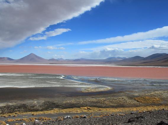 Laguna Colorada, 4278m, Bolivie