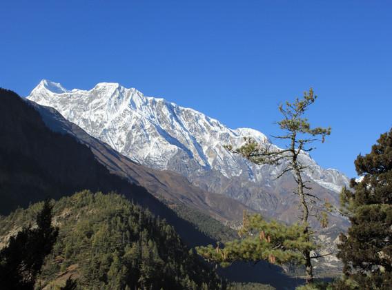 Annapurna IV 7525m
