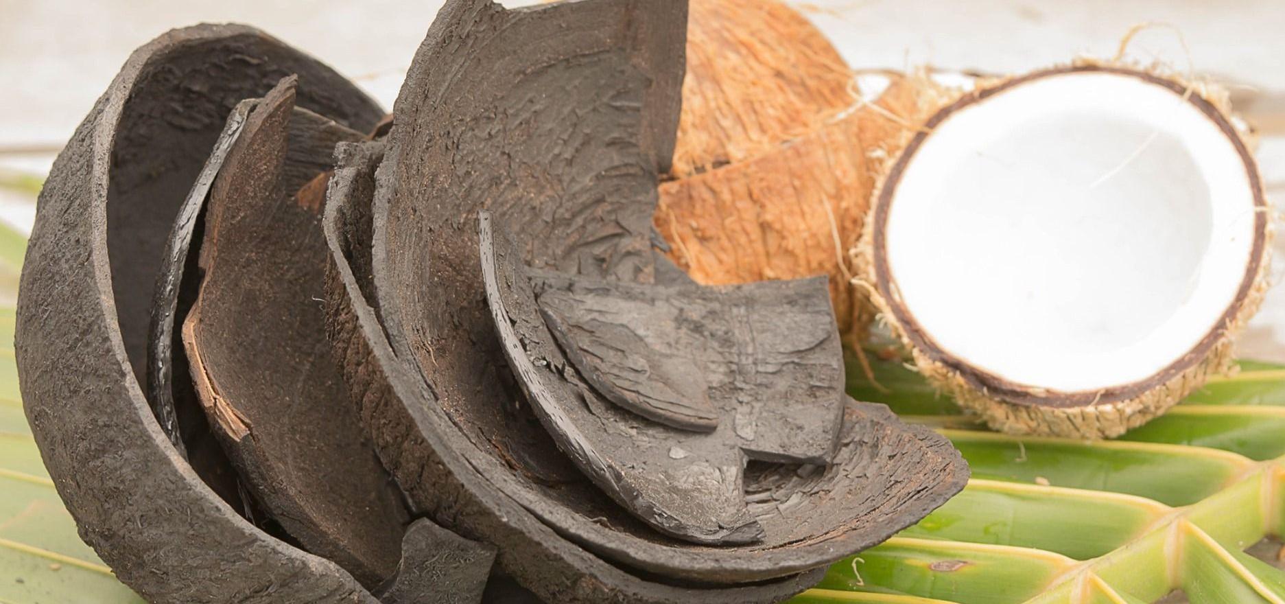 Aktivkohle Kapseln Kokosnussschalen