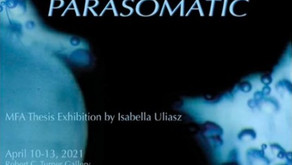 Parasomatic