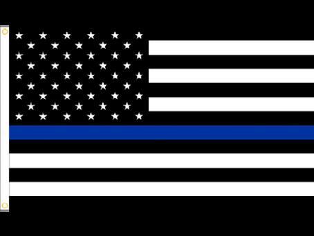 Blue Lives Do Not Matter
