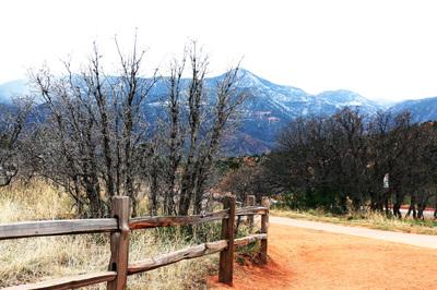 Colorado C14