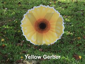 Yellow Gerber.png