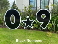 Black Numbers.png