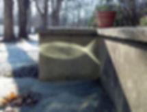 MYSTIC FISH2011-12-11_10-03-10_51Christi