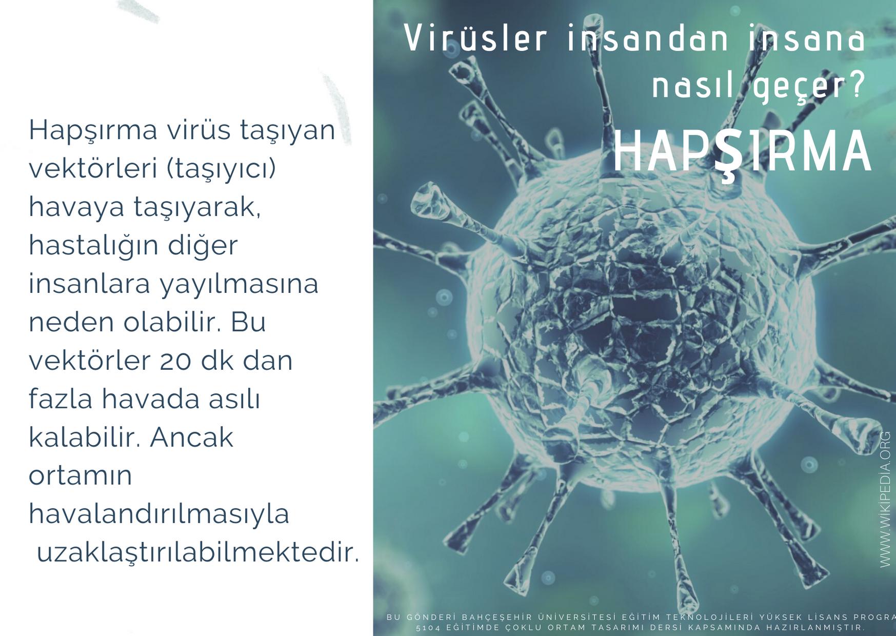 HAPŞIRMA (2)