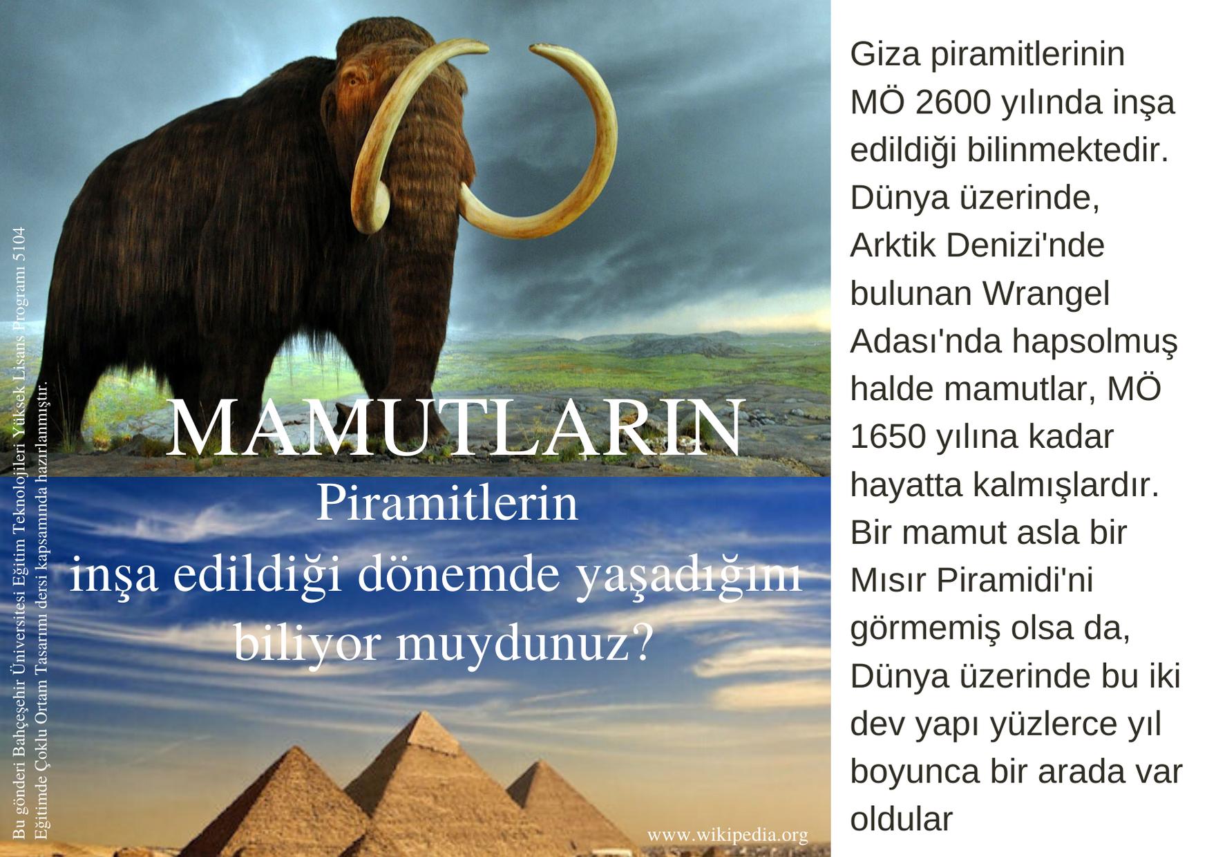 PİRAMİTLER (1)