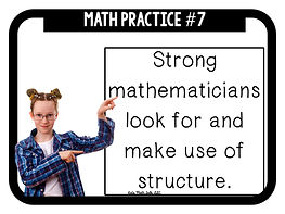 8 math practices 7.15.17.036.jpeg