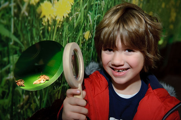 A young boy smiles at the camera, he is holding a large wooden magnifying glass. A small window in the wall next to him shows two moths on display