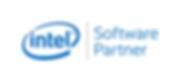 Partners-intel.png