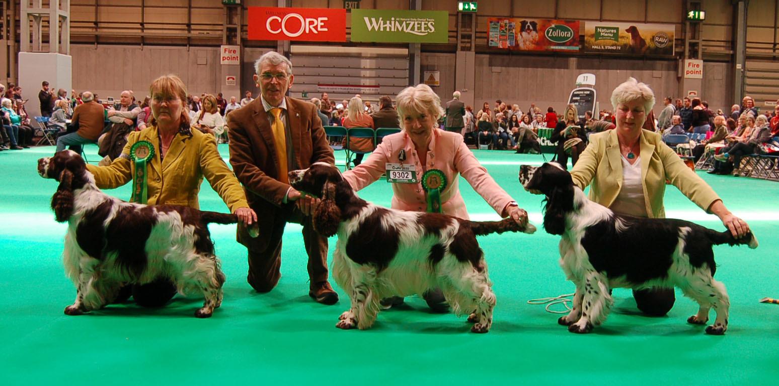2020 03 06 - dog line up crufts.jpg