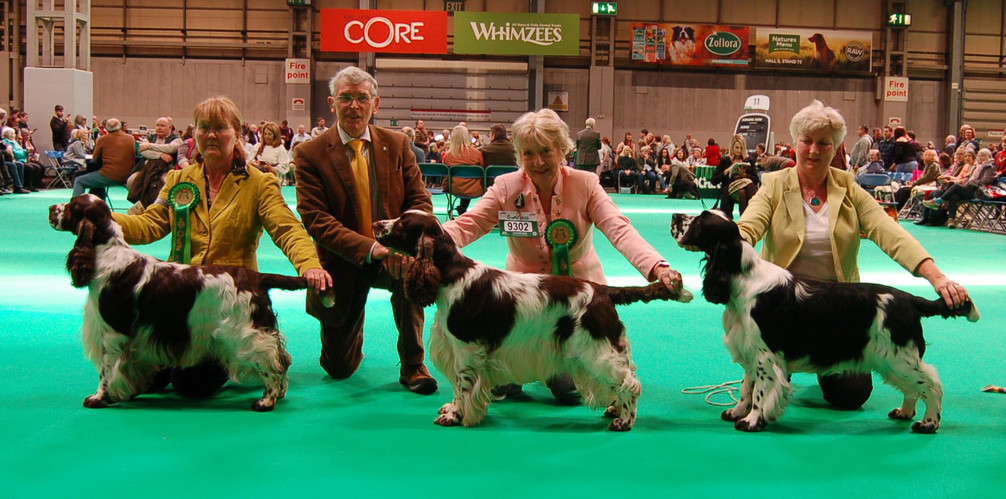 2020 03 06 - dog line up crufts.jpg