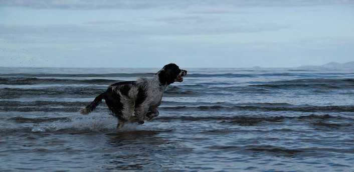 2014 08 - Ireland Chaos in the sea.jpg