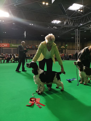 2020 03 06 - bolt crufts.jpg