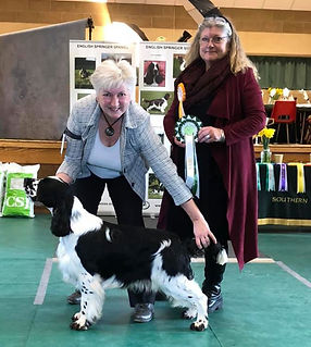Bolt winning Best Puppy In Show at SESSS