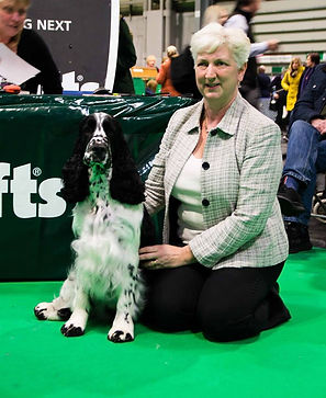 209 03 07 - crufts sitting.jpg