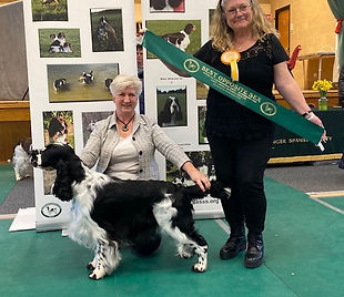 Storm winning Reserve Best In Show at SESSS