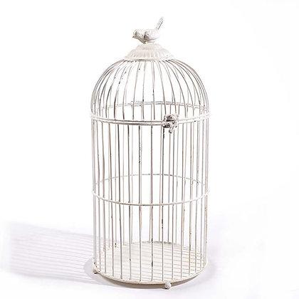 Vogelkooi vogel