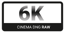 © 6K Raw Logo by FlyHigh Stock