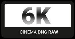 © 6K Raw Logo by FlyHigh Stock FlyHighStock6K
