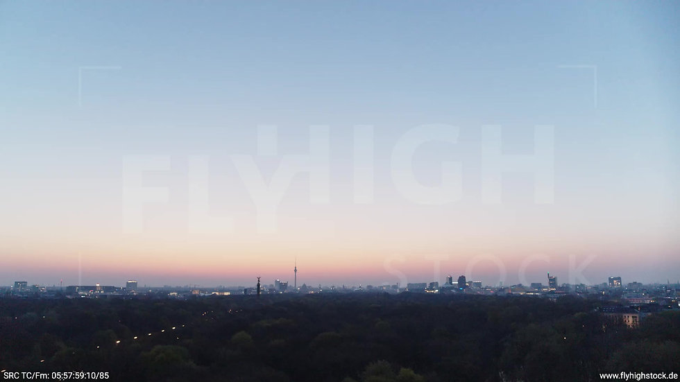 Berlin Tiergarten Skyline Parallelflug morgens