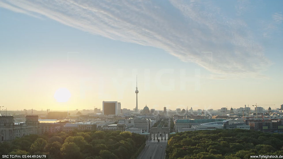 Berlin Tiergarten Brandenburger Tor Zuflug morgens D029_C015