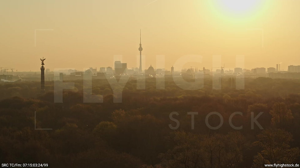Berlin Tiergarten Skyline Zuflug morgens 12
