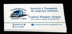 Logo + tarjeta de presentación