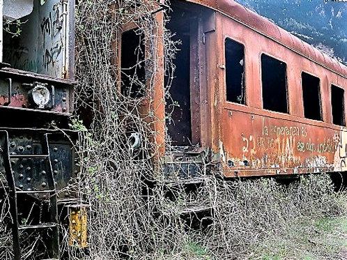 """""""Exterior tren"""""""
