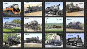 Steam Engines Photo Panel