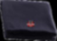 serviette-cutout.png