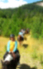 Horses - trail riding_edited.jpg